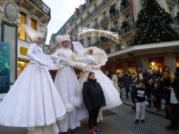 Des échassiers drôles et élégants à Angers