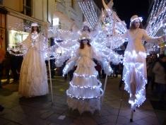 Lumière et féerie avec les échassiers blancs à Angers